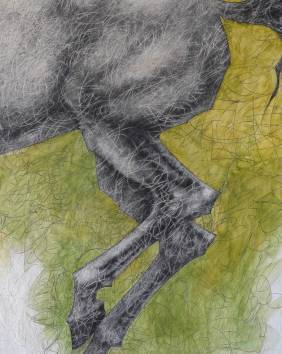 Horse - detail.180 x 182 cmm. Acrylic and graphite pencil on wood.