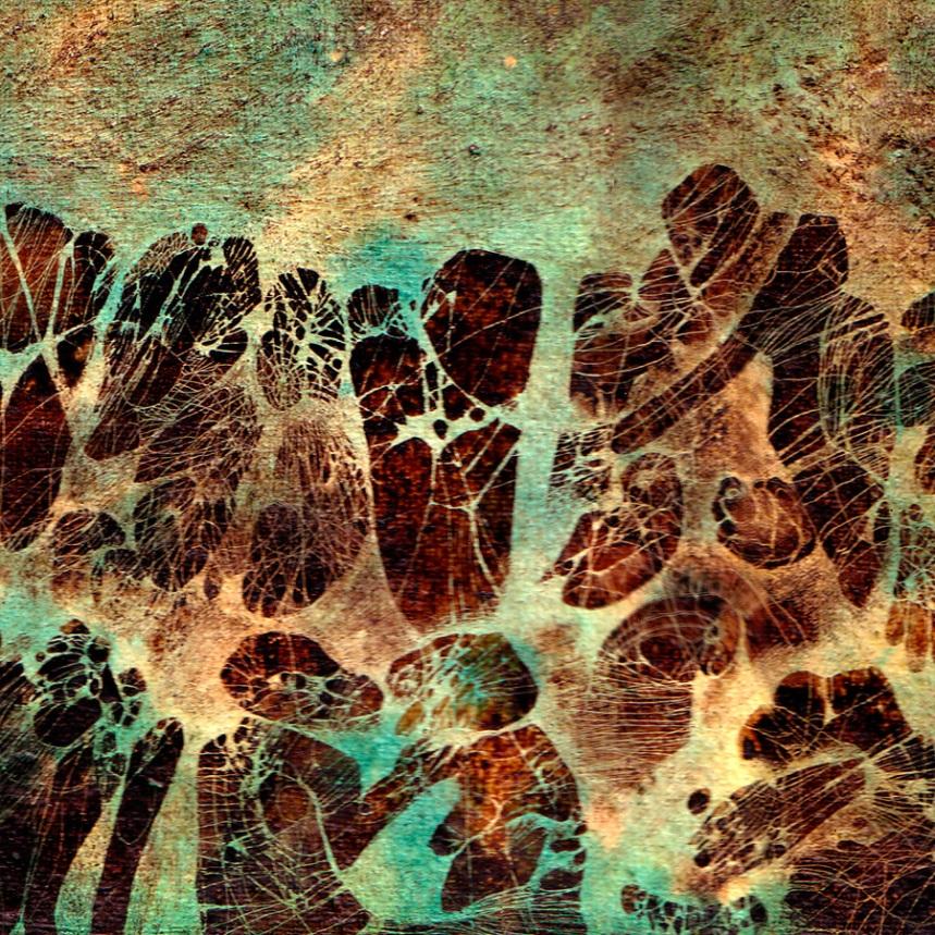 Landscape - detail