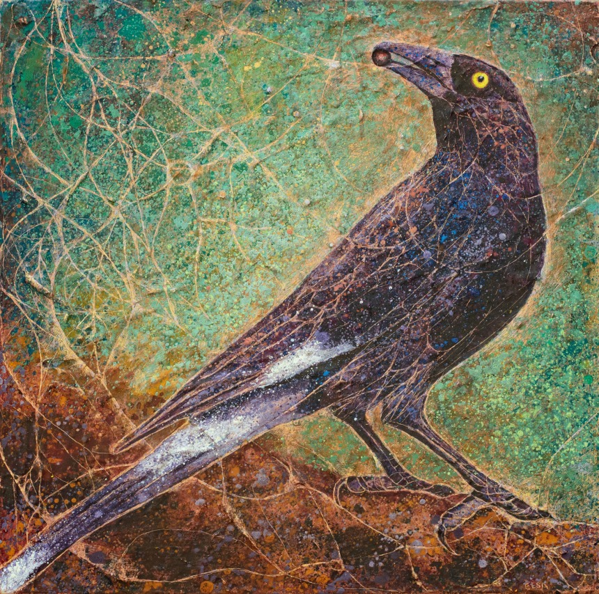 The Currawong